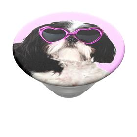 PopSockets PopTop Gen.2, Sassy Shih Tzu, shih tzu se sluneèními brýlemi, výmìnný vršek