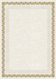 Galeria Papieru diplomy Arkády zlatá 170g, 25ks